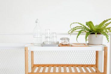 duurzaam huis planten