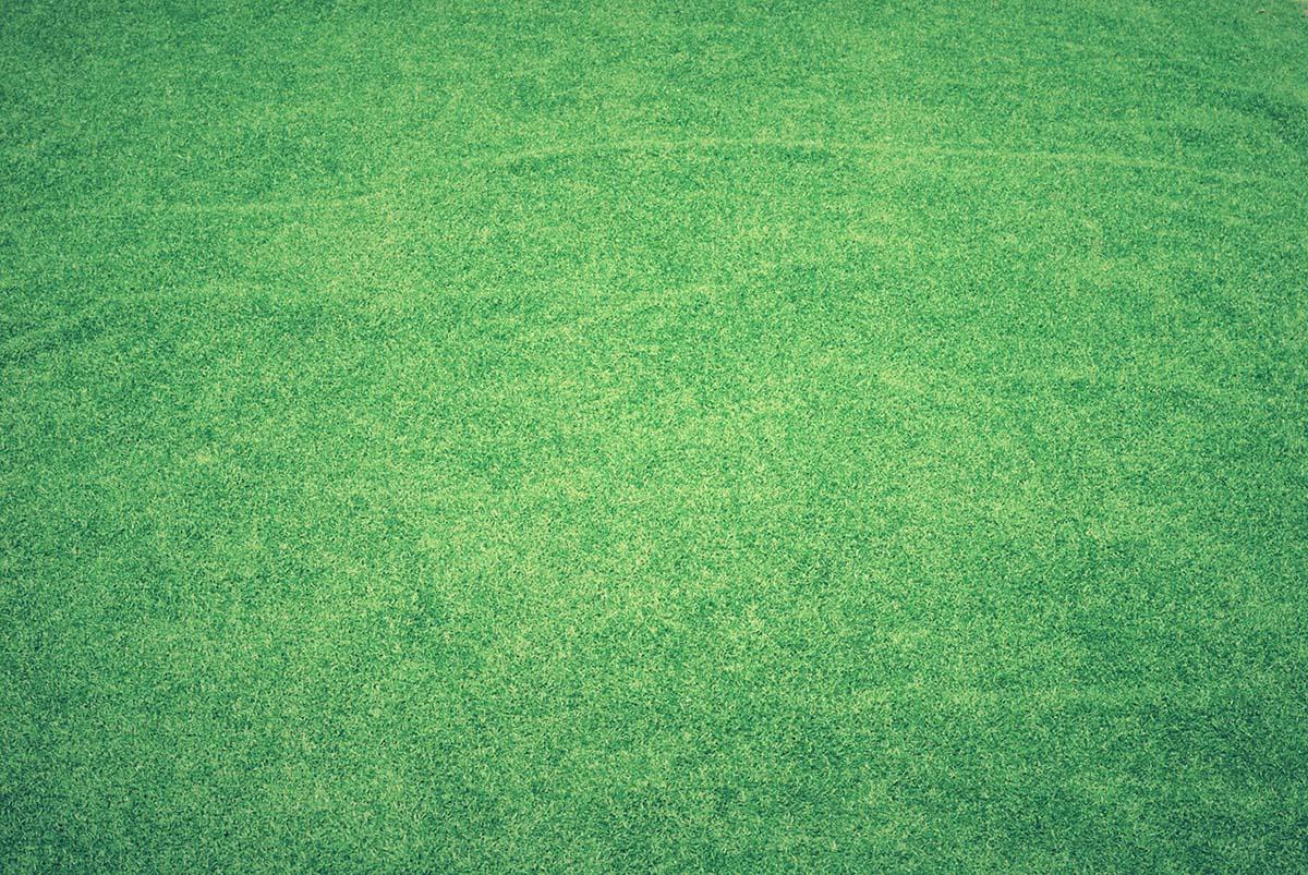 kunstgras-duurzaam-thedailygreen