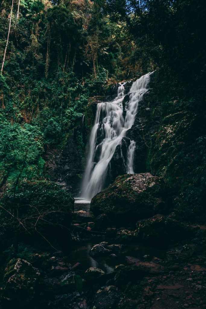 amazone-brazilie-waterval-thedailygreen