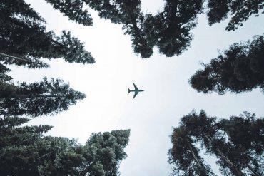vliegschaamte-co2-compenseren-thedailygreen