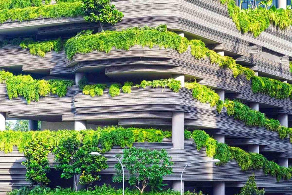 meer-groen-in-de-stad-voordelen-thedailygreen