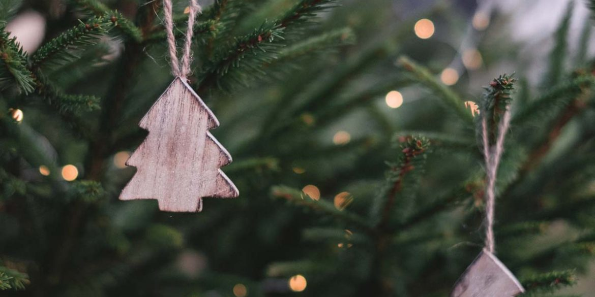 duurzame-kerstboom-thedailygreen