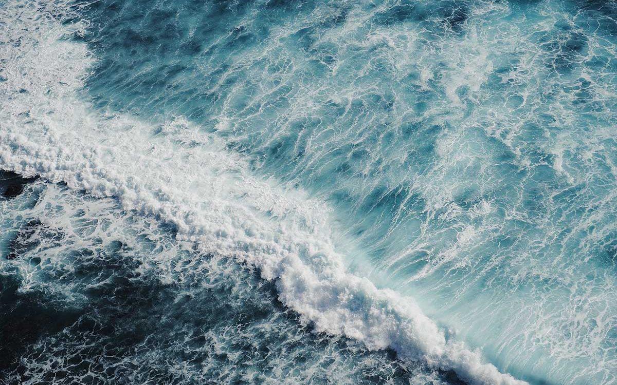 steengruis-dumpen-oceaan-thedailygreen