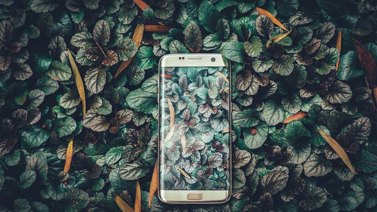 de-meest-duurzame-apps-thedailygreen
