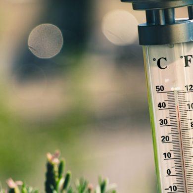 opwarming-aarde-kost-miljarden-levens-thedailygreen