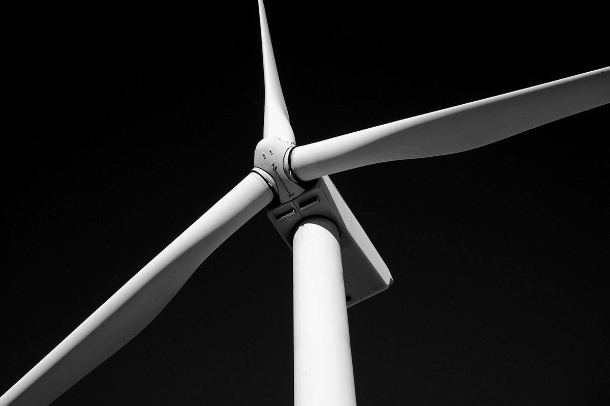 duurzame-energie-providers-thedailygreen