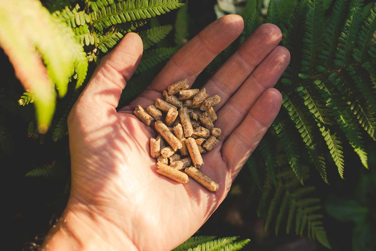 pellet-kachel-duurzaam