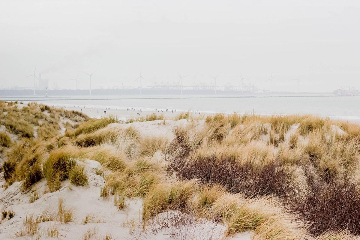 duurzaam-vakantie-eigen-land-thedailygreen