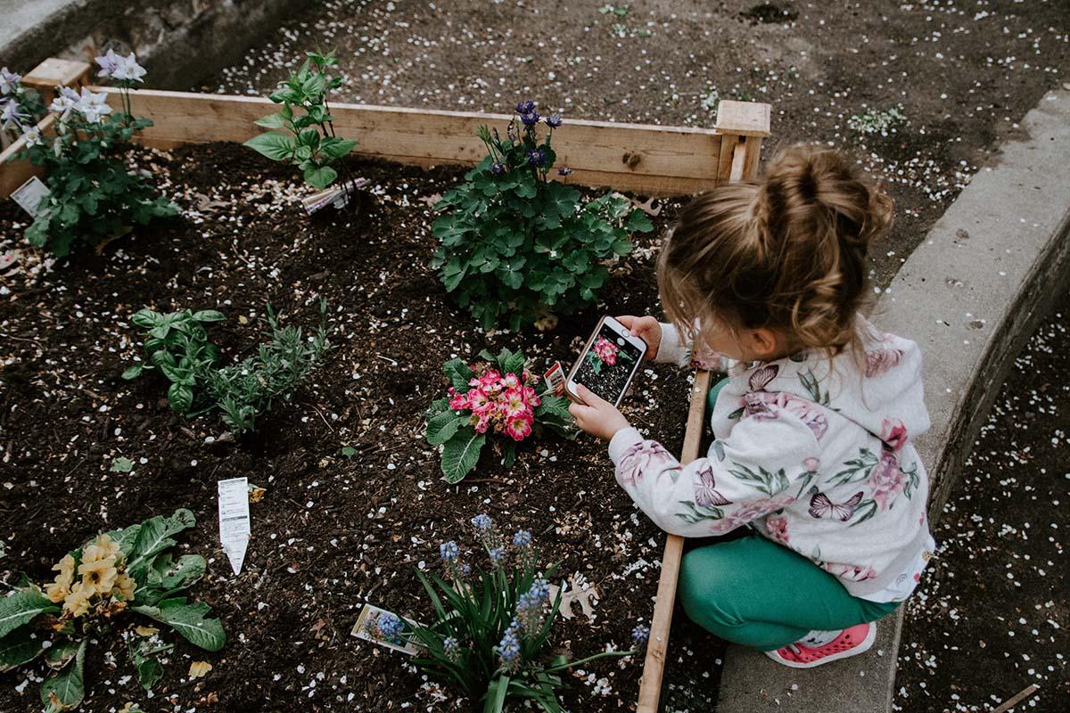 kindvriendelijke-duurzame-tuin-thedailygreen
